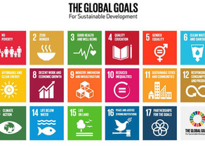 The SDGs: shifting perspectives for businesses
