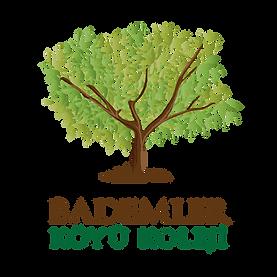 Logo Kolej Kare-01.png