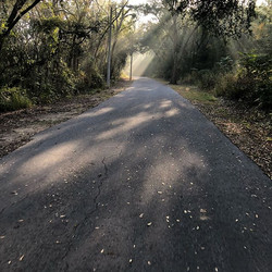 Fog burning off early this morning made for a beautiful ride w _aliciakayetri  our training is going