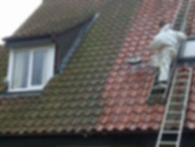 specialist roof cleaning