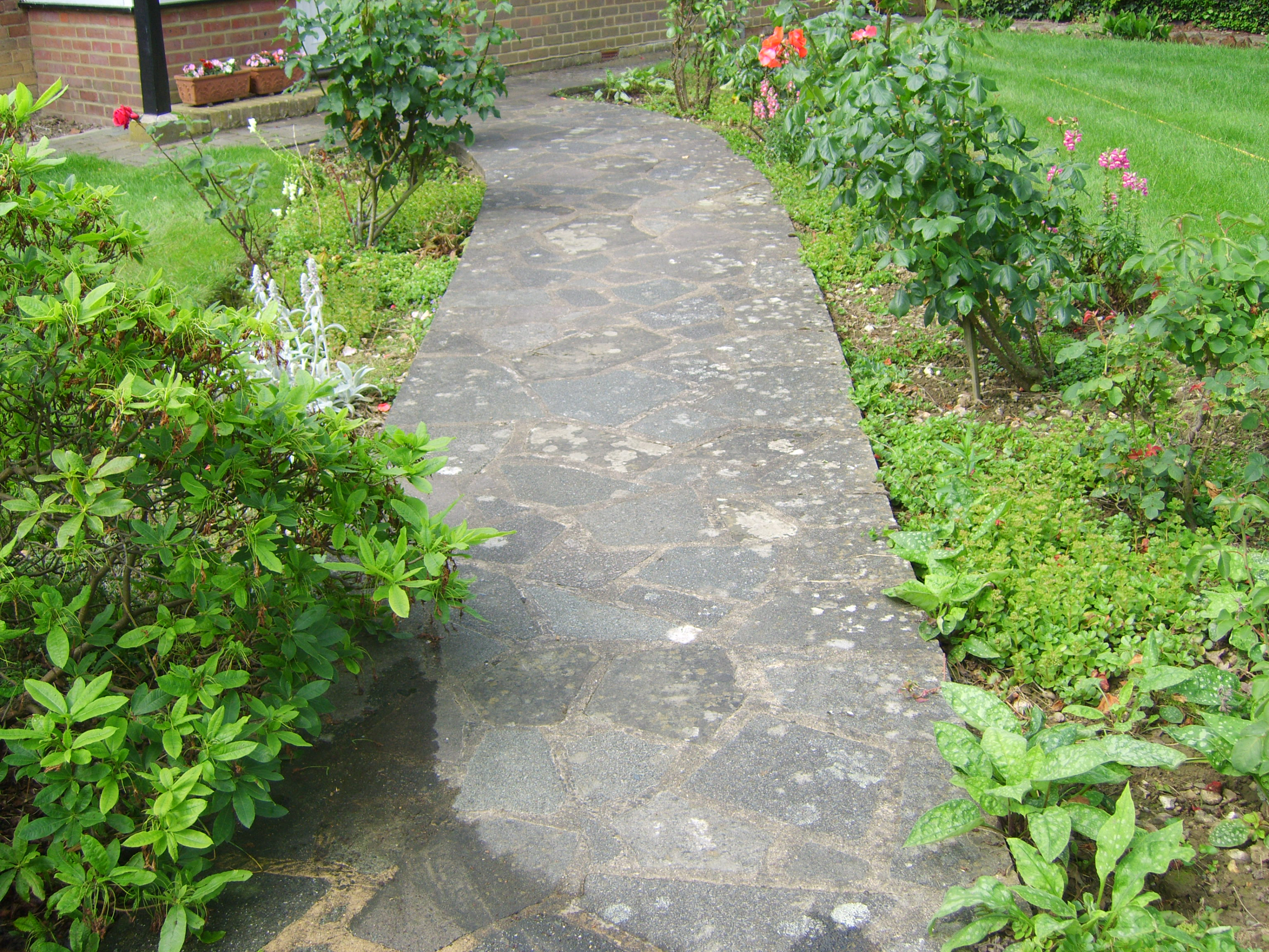 Jet Washing - Garden path pre-clean.jpg