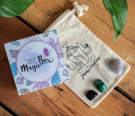 Proteção do Carro | MagicBox