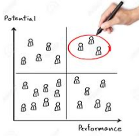 High Performance & Potential