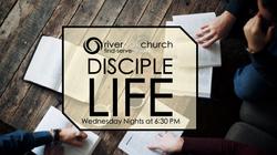 disciple life_web add