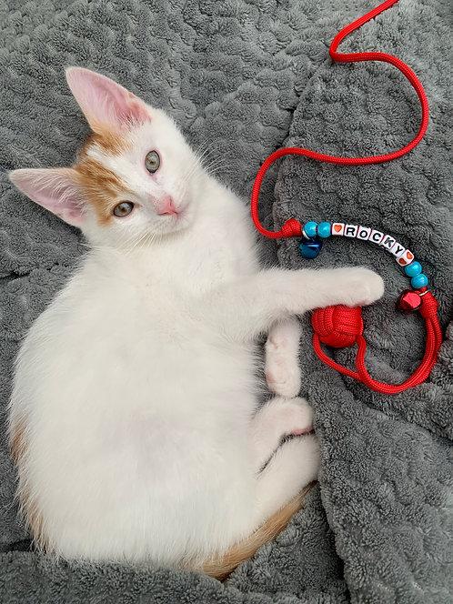 Jouet Chat Petit chien personnalisé BALL CAT avec prénom ROCKY balle - La Pomme de Touline. Poing de Singe