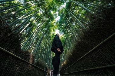 OSAKA KYOTO - DERRY AINSWORTH-02082.jpg
