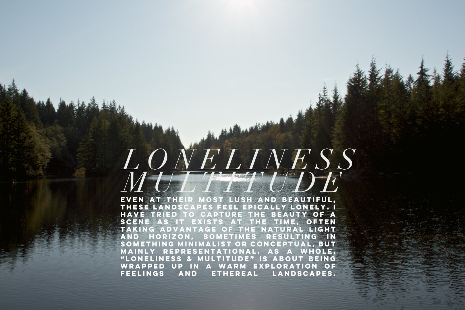 loneliness-multitude0_cover_50pc_q7.jpg