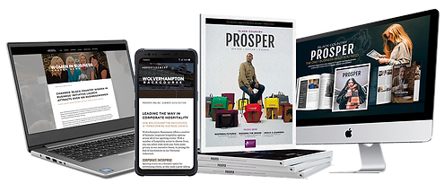 PROSPER ONLINE Web.png