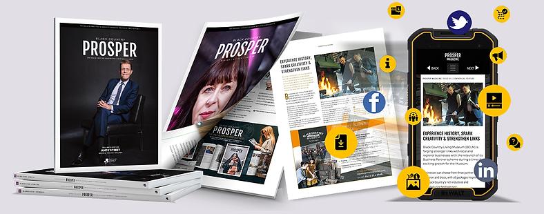 PROSPER Online 2.png