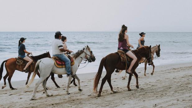 Canva - People Riding Horses on Beach.jp