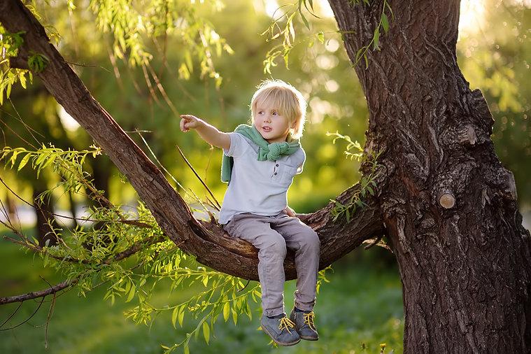 little boy bird spotting in nature