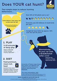 SBS Cats and Their Owners Research Infor