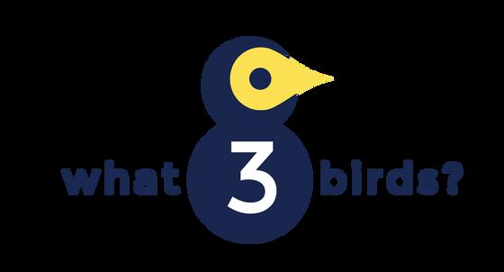 26/04/21 - what3birds?