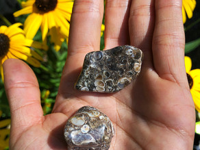 Grounding with the survivor's stone: Turitella Agate