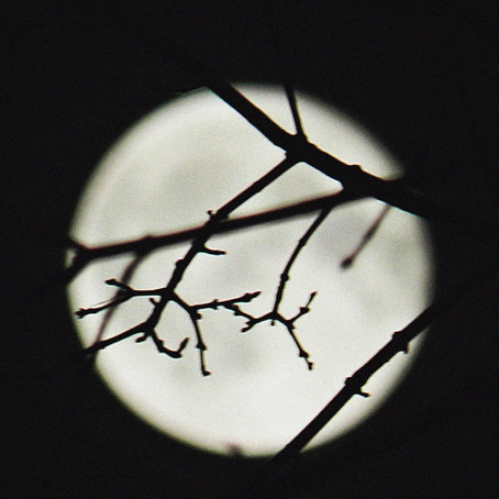 Working With: Full Moon Practices