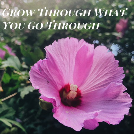 Are you Being a Road Block In Your Own Growth?