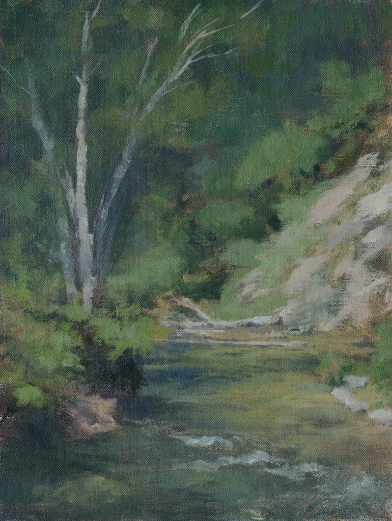 """Spearfish Creek Afternoon""   9x12 o"