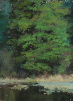 """""""Edge of the Trout Pond"""""""