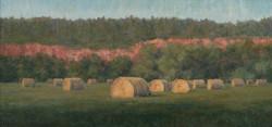 """""""Battle Creek Hay Meadow""""   8x16 oil"""