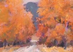 """""""The Colors""""  2x3 pastel"""