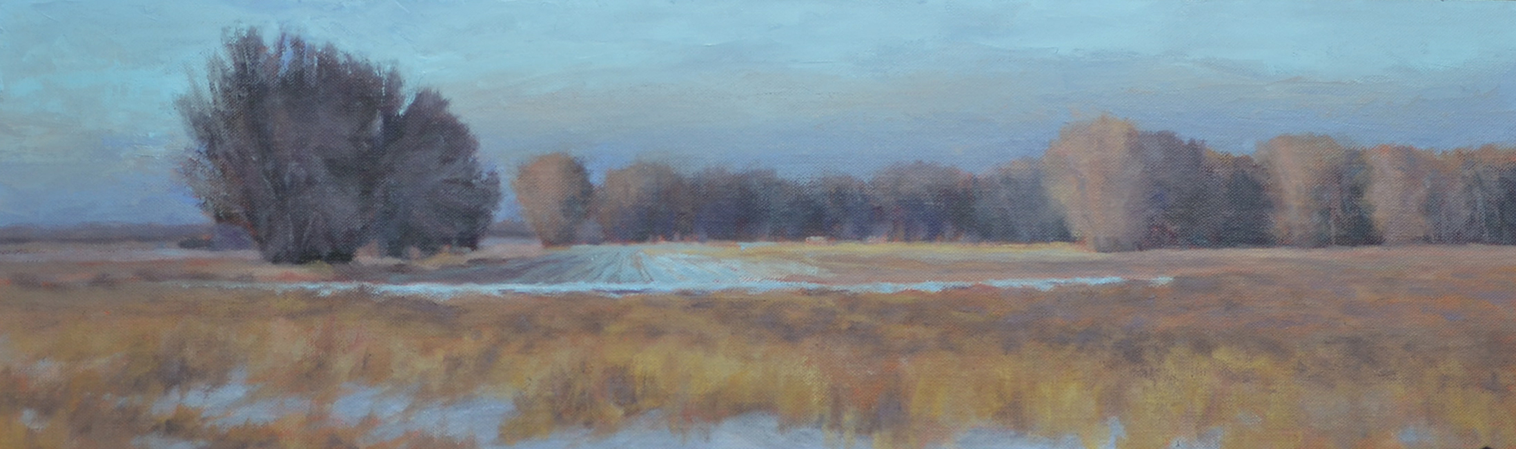 """Field By The Powder River""   30x9 o"
