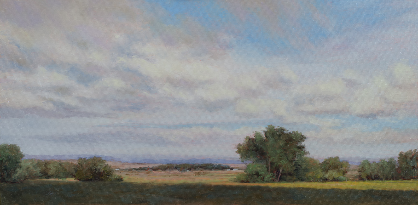 """Going West""   15x30 oil"