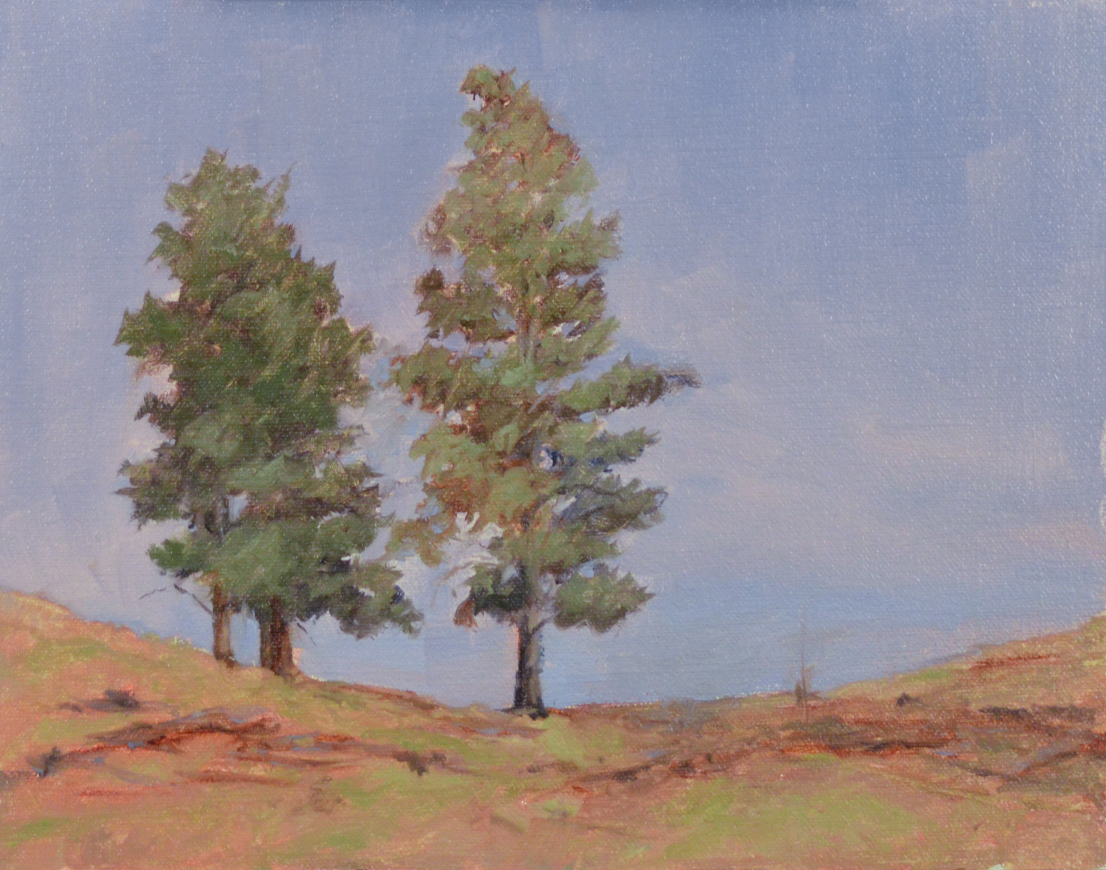 """Pines on the Hill""   8x10 oil"
