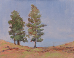 """""""Pines on the Hill""""   8x10 oil"""
