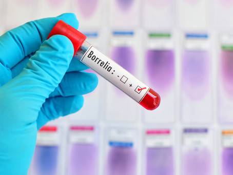 Long Island Lyme Disease Testing