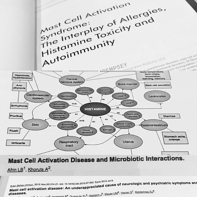 Mast Cell Activation Syndrome (MCAS) Questions Answered: Dr
