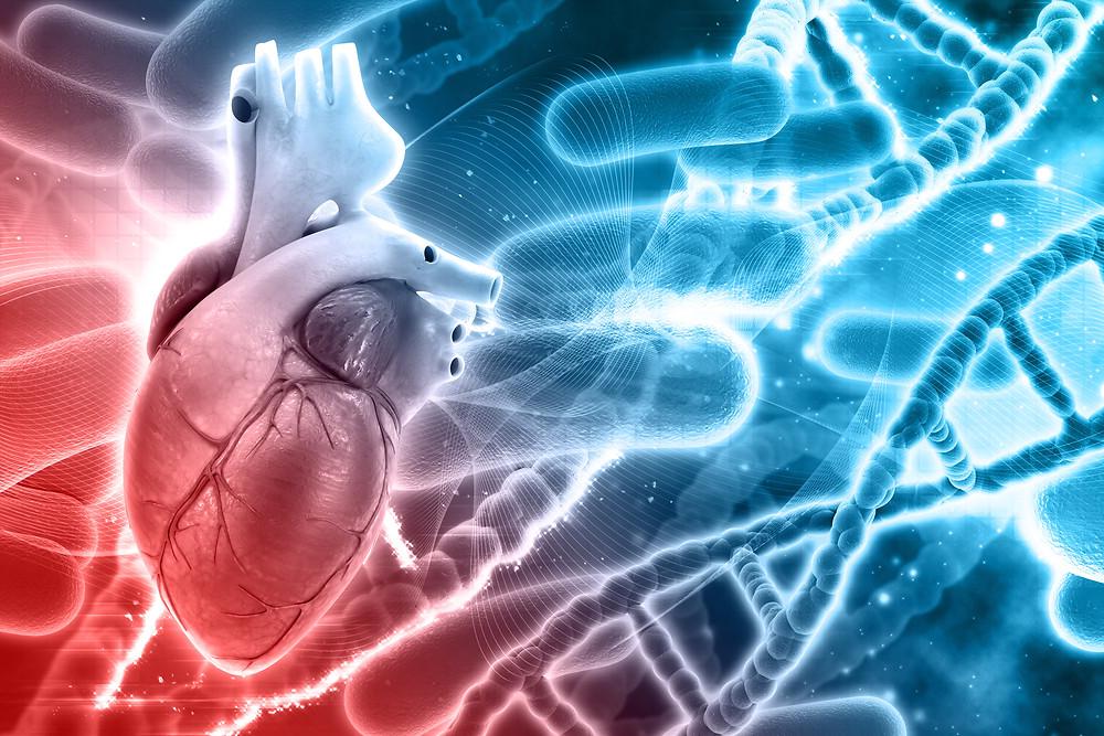 Heart Disease Dr. Tania Dempsey