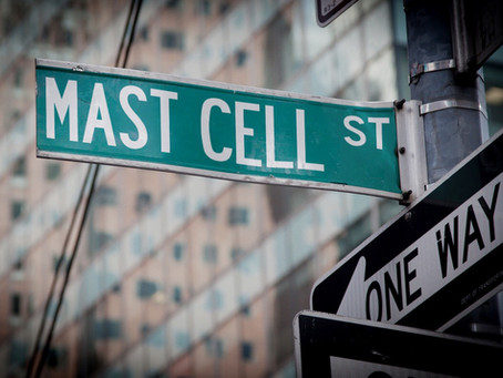 Ask The NY MCAS Expert: Mast Cell Activation Syndrome Questions Answered
