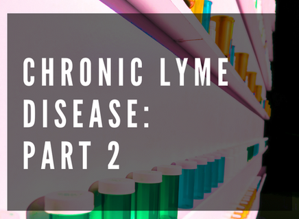 Chronic Lyme Disease: Part Two