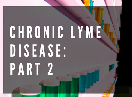 Chronic Lyme Disease: Part Two