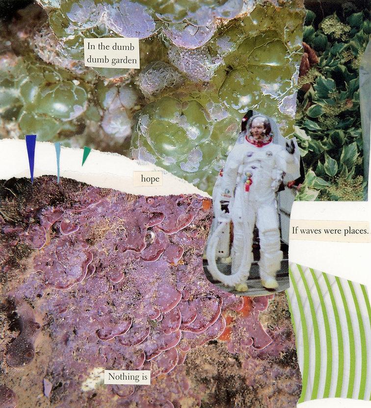 dumb garden011 (1).jpg