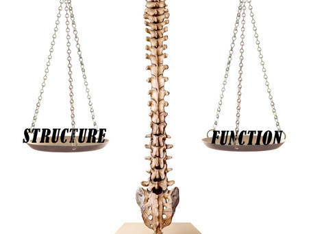 Reschke's Third Law of Chiropractic: Balance