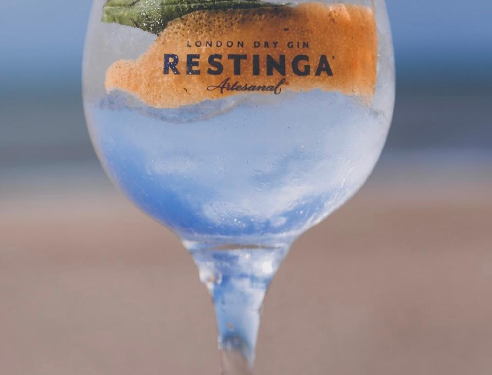 Copon Gin Restinga 580cc