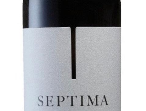 Septima Cabernet Franc 750cc