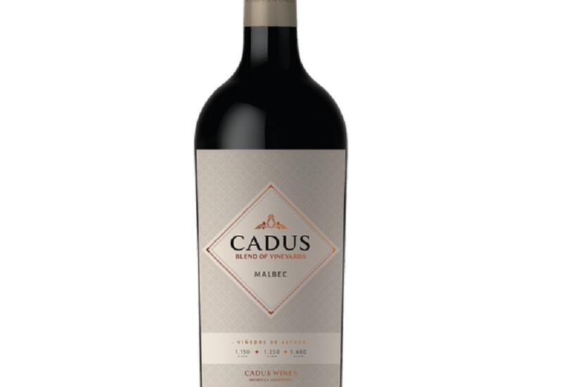 Cadus Blend of Vineyards Malbec 750cc