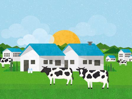 Maeil. Food Service & Ice-Cream Brochure Design