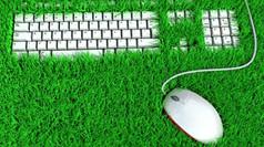 5 ideias para tornar o seu trabalho mais sustentável