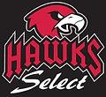 MBA Hawks Select Baseball.jpg