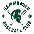 Spartans Baseball.jpg