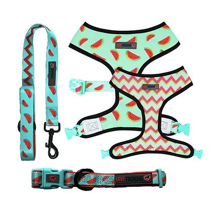 Tutti Frutti - Reversible Harness, Collar & Leash Set