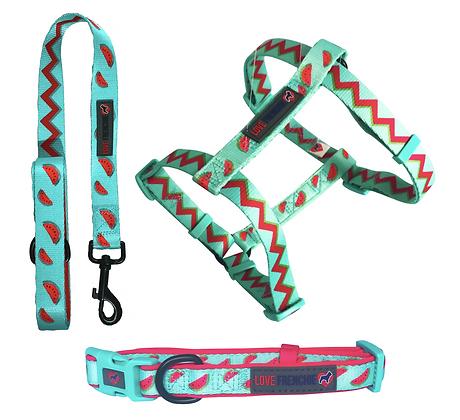 Tutti Frutti - Strap Harness Set