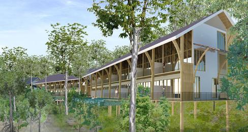 B E321_HILLSIDE_mangrove view_r1.jpg