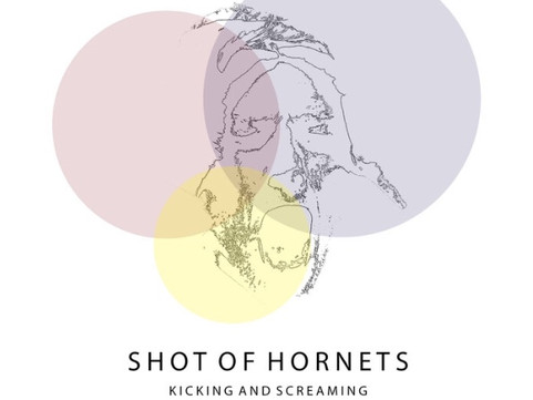 Shot Of Hornets - 'Kicking And Screaming' Single Review