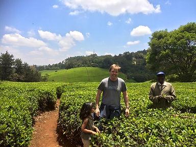 Visiting a tea plantation in Kenya