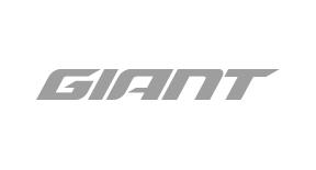 giant-grijskopie