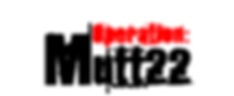 Mutt22 Foundation Service Dog for Vets